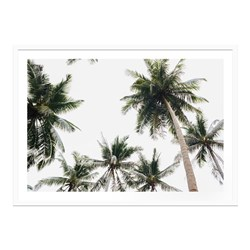 Tropical Sky Framed Print 120cm x 86cm