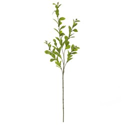 Gardenia Leaf Stem Green 83cm